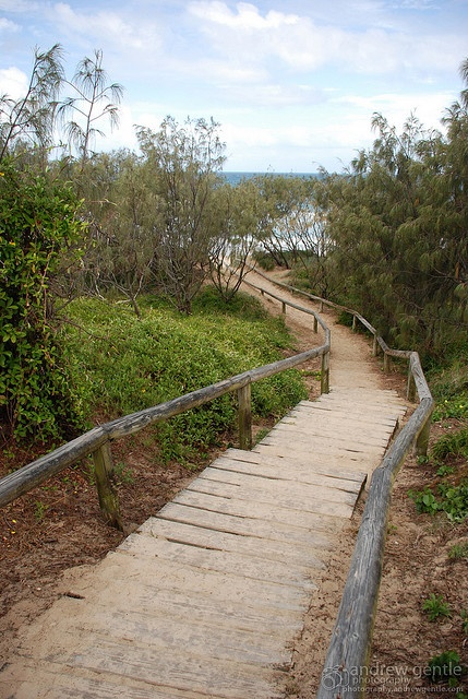 Sunshine Beach stairway to the beach in Noosa. Use The Noosa App to find out what you can get up to, where to shop, eat and play in Noosa with #TheNoosaApp download it for free with iTunes and Google play. #Noosa #Queensland #ThisisQueensland #PhoneApp #Tourism #SunshineCoast.