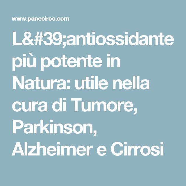 L'antiossidante più potente in Natura: utile nella cura di Tumore, Parkinson, Alzheimer e Cirrosi