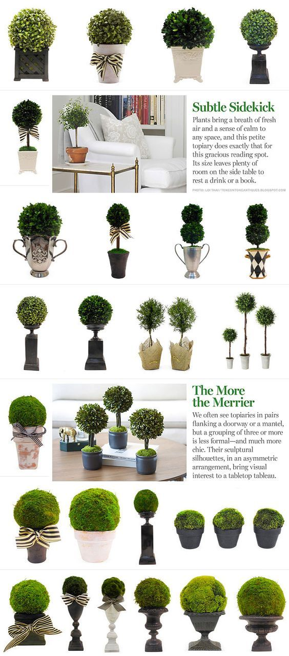 INSPIRATION :: Ideas for topiary arrangements...from #OneKingsLane. Moss balls & boxwood, pots & urns...: