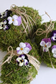 Moss eggs and violas are so beautiful together!
