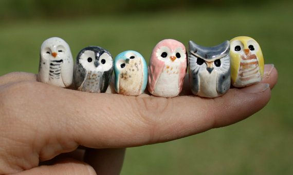 Miniature owls <3