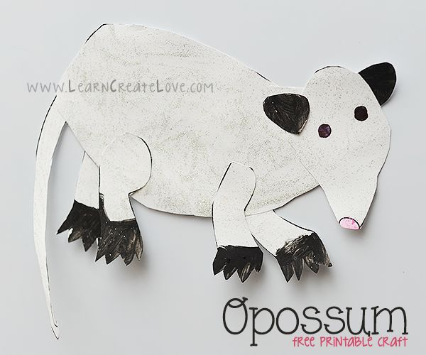 Opossum Printable Craft | LearnCreateLove.com