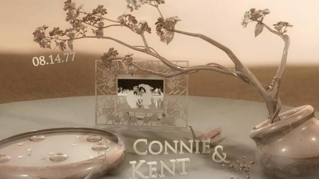 They are the stars of our most memorable videos...our parents! Here is a 3D photo montage of their beautiful wedding day in 1977. (www.henjofilms.com)