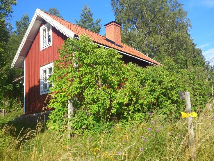 Gällnö island, Stockholm archipelago 2012.