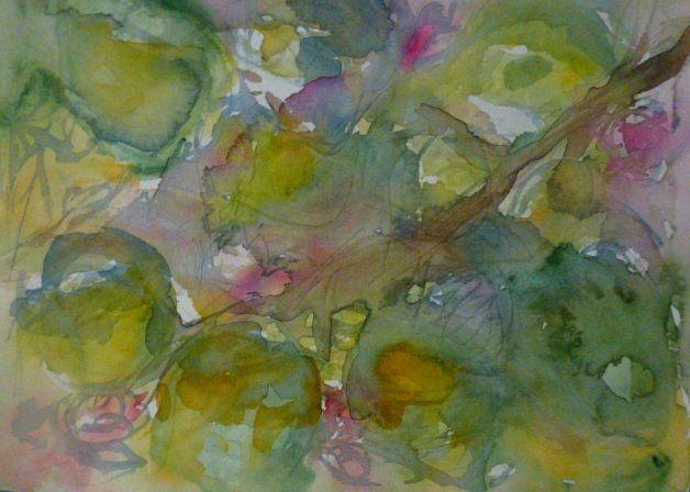 Appletree, Sirkkaliisa Virtanen, watercolor