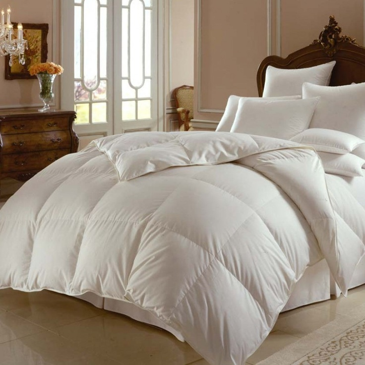 Downright Himalaya 800 White Goose Down Comforter Size: Oversized King - MR0830SIB