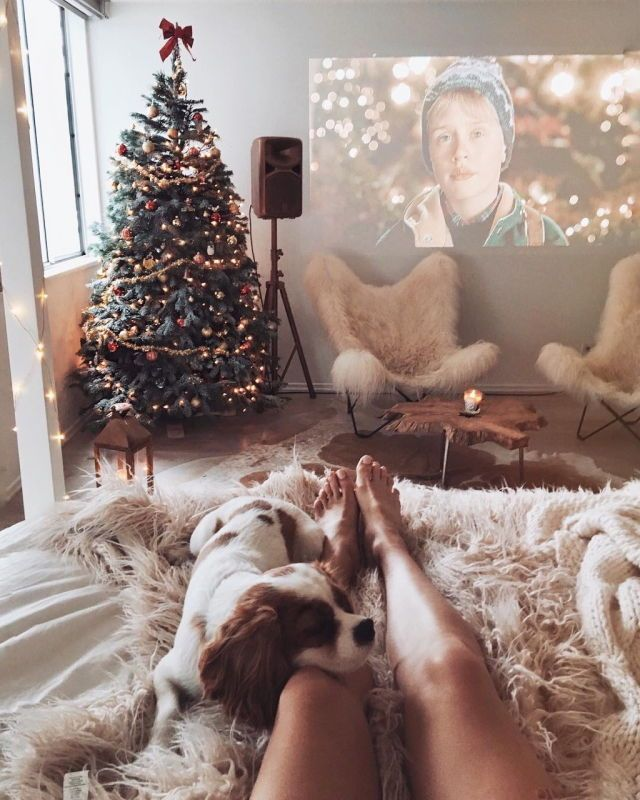 Perfect holiday. Dog. Beautiful tree. Cody bed. Home Alone on a big screen. Yep.