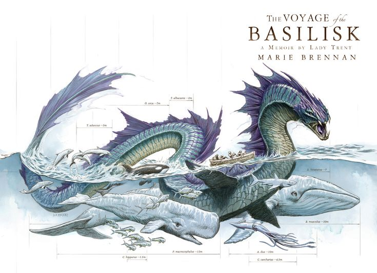 The Voyage of the Basilisk (Memoir by Lady Trent #3) by Marie Brennan (Full wrap-around cover)
