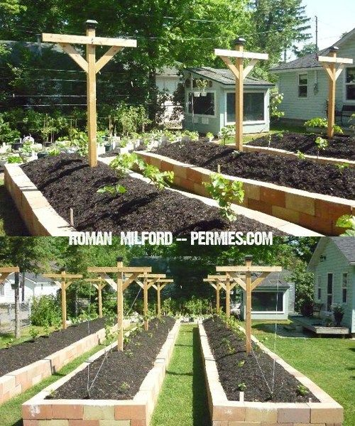 Unique Raised Bed Garden Ideas: 25+ Best Ideas About Raised Bed Garden Design On Pinterest