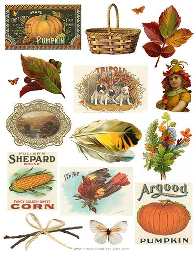 I love Fall, especially all the beautiful colors. I put together a autumnal-inspired clip art collage sheet that you can download for free at Eclectic Anthology