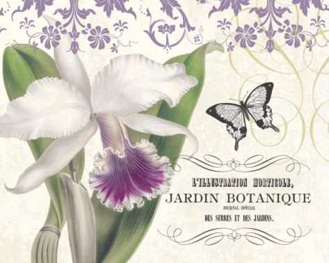 Jardin Botanique I Print by Paula Scaletta at Art.com