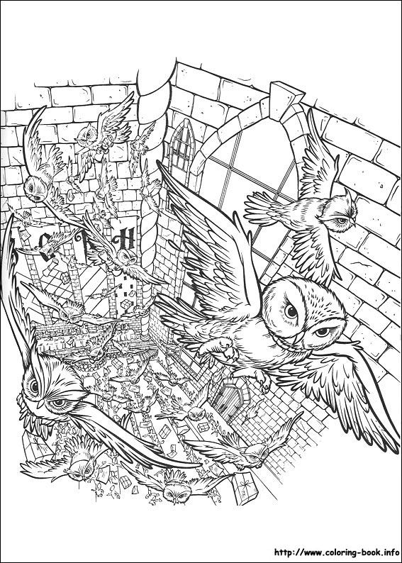 92 best Coloring Pages images on Pinterest Coloring books, Harry - fresh coloring pages harry potter