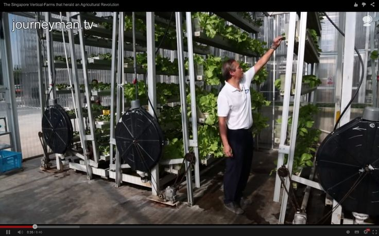 Vertical cropping with aquaponics