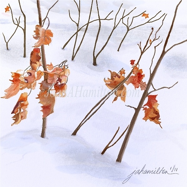 """Winter Leaves"" - Digital Watercolour, in Snowy Landscapes"