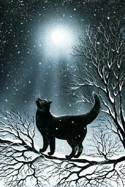 Snowy Night With Intense Moonlight. (Irina Garmashova Cats).