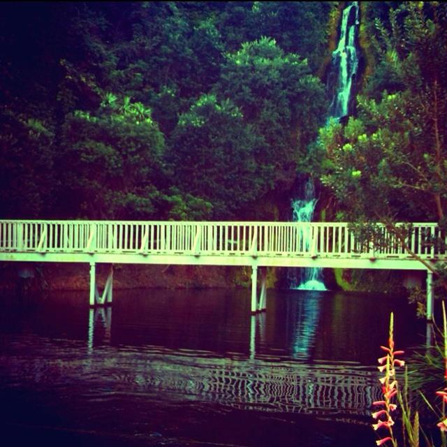 Waterfall, Centennial Gardens, Napier, NZ