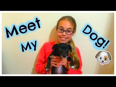 Meet my pet Tag! - YouTube