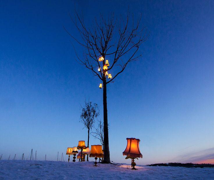 Nordic winter lights