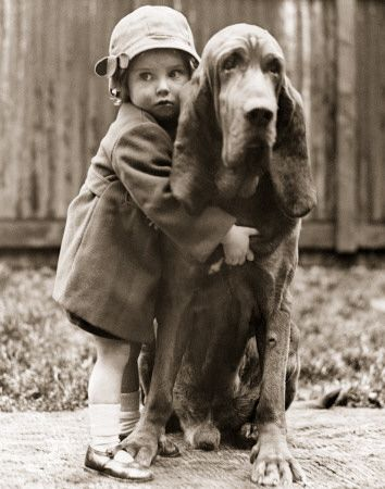 i've always wanted a bloodhound