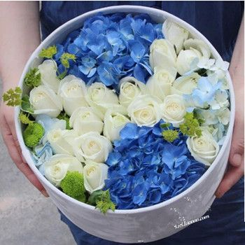Import blue Hydrangea,19 white roses green chrysanthemum in a round box.(box color vary locally)