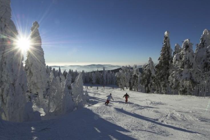 """INNs HOLZ Chalet im Winter - Das angrenzende Skigebiet """"Hochficht"""""""