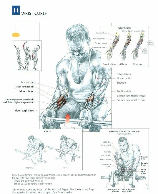 Wrist curls. Join our community at https://www.facebook.com/ILoveFitnessBetaCoreHealth