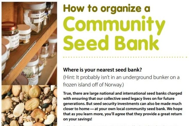 68 Best Common Soil Seed Library Images On Pinterest