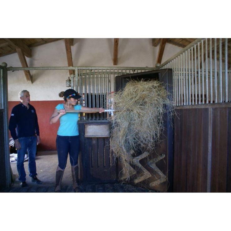 Vente en ligne du distributeur de foin pour chevaux breveté FAUTRASELF. Jean-Luc Fautras, innovateur équestre commercialise ses innovations via son site e-commerce fautrastuces.com.