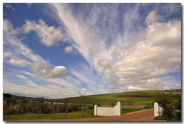 D'Aria Winery - Durbanville - Cape Town