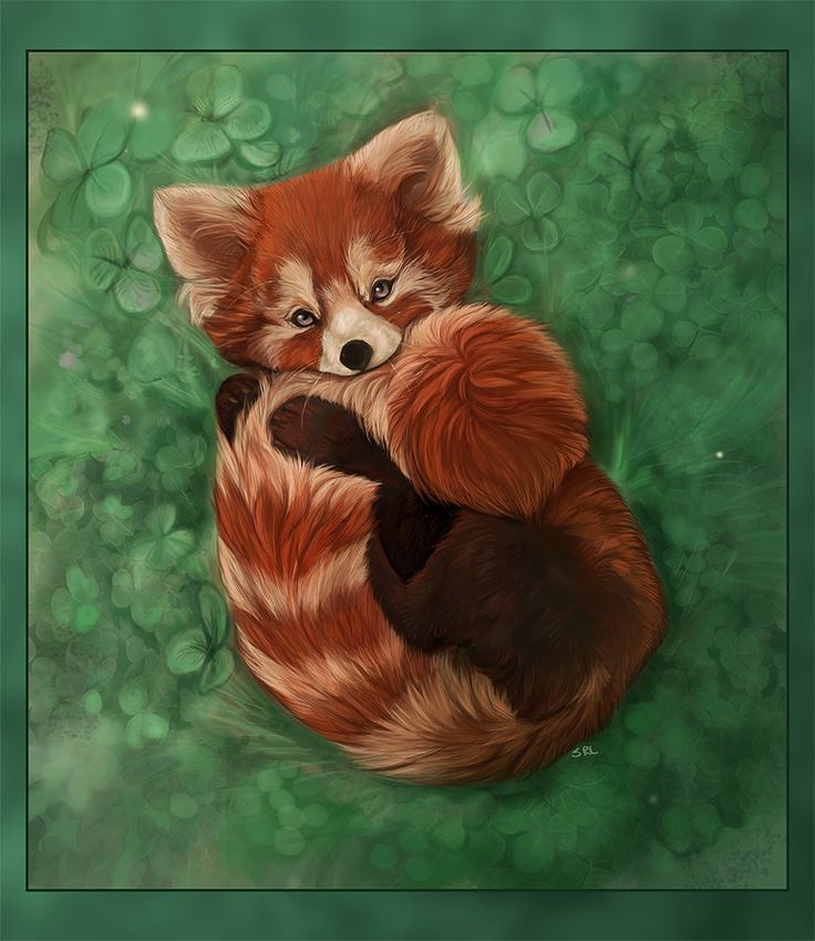 If I was gonna do a panda it would be a red one  Red Panda by Daisy7 on deviantART