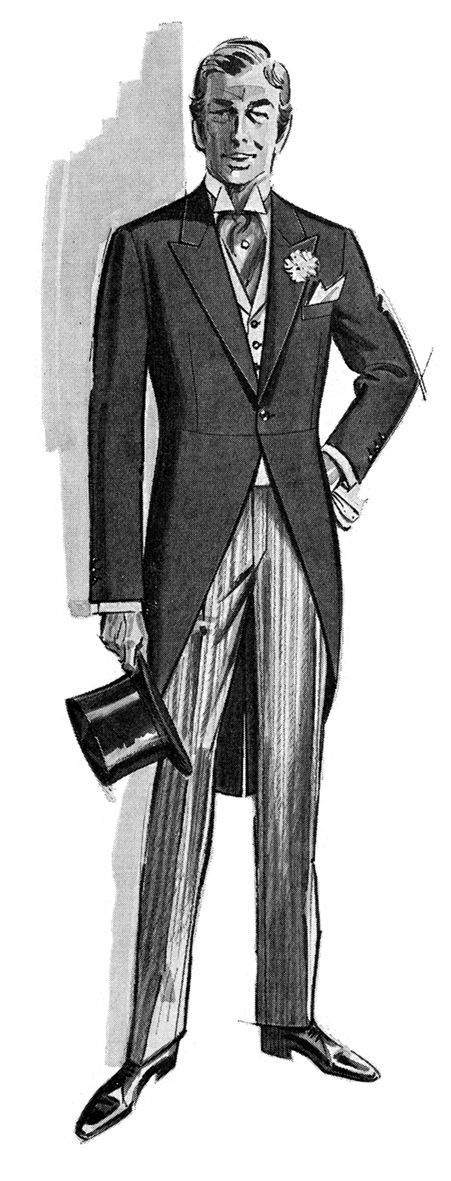 Modern formal festive morning dress consists of a morning coat, waistcoat and striped trousers. Shown is the ideal fit of a body coat (morning coat) & waistcoat