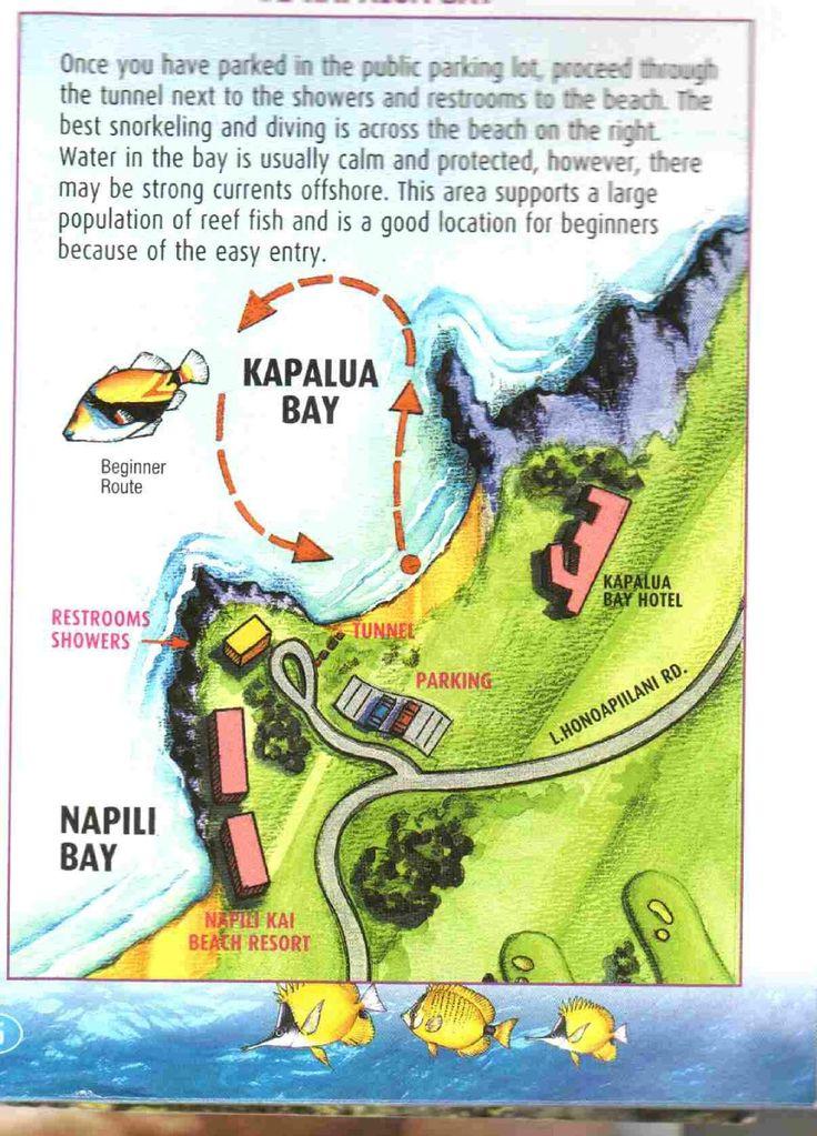 Kapalua Beach (HI): Address, Tickets & Tours, Attraction ...