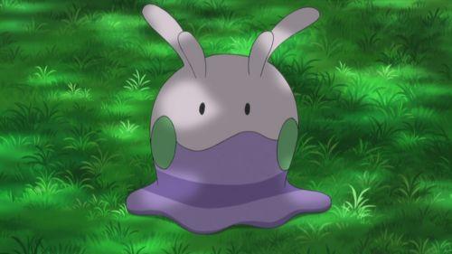 Ash's Goomy (miss this little guy) :(