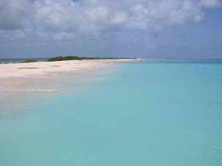 Travel With MWT The Wolf: Most Beautiful Pictures of Mwt Barbuda Spring 2004...