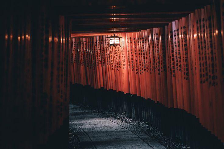 "Fushimi inari - ©Takashi Yasui<br> <a href=""http://takashiyasui.com/"">Portfolio</a> | <a href=""http://www.instagram.com/_tuck4/"">Instagram</a> | <a href=""http://www.facebook.com/takashiyasui.photography"">Facebook</a> | <a href=""http://reco-photo.com/"">RECO</a>"