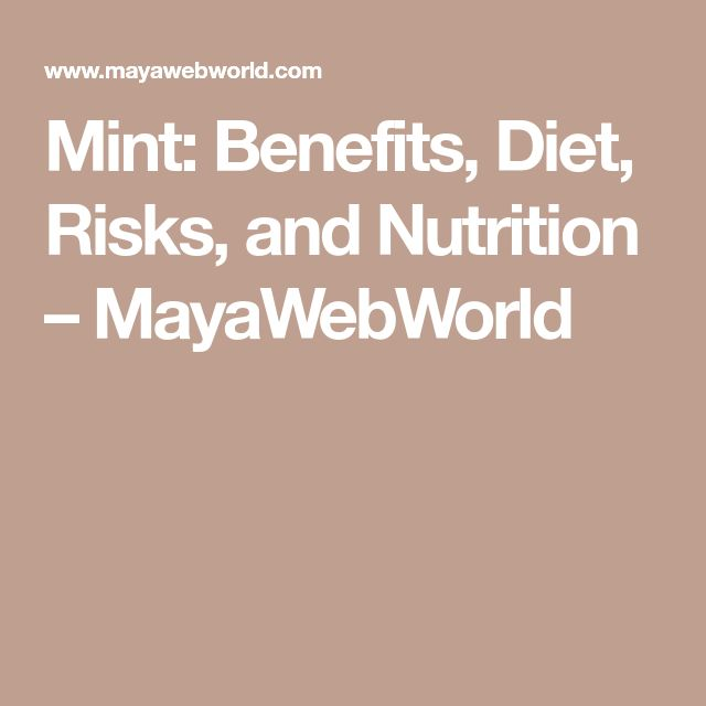 Mint: Benefits, Diet, Risks, and Nutrition – MayaWebWorld