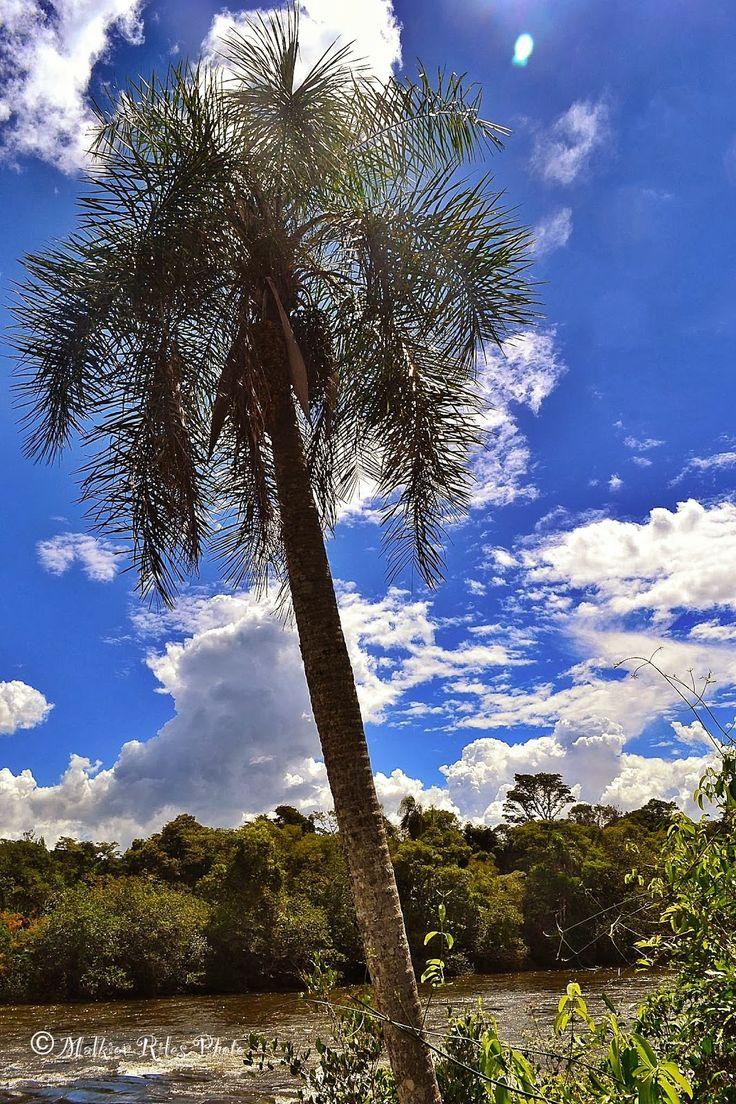 Malkior Riles Photographs: Cataratas de Iguazu. Lado Argentino. Garganta del ...