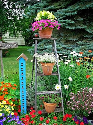 Need some quick height in your garden? Add an old ladder and fill it with pots! Love it!  Via Organized Clutter QueenFlower Border, Birdhouses, Step Ladders, Gardens Ideas, Organic Clutter, Flower Gardens, Birds House, Flower Beds, Gardens Junk