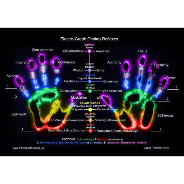 Even our hands emanate energy based on our chakra system. The base part of the palm connects to our root and the tips of our fingers connect to our crown.
