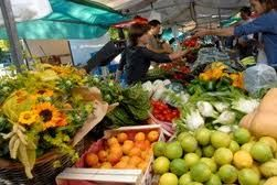 Biologische markt boerenmarkt Midden Nederland voor wie gezond en biologisch wil eten en graag wil weten waar producten vandaan komen en hoe ze worden geteeld of geproduceerd. Biologische markt boerenmarkt Midden Nederland naast het kopen van biologische, verse en pure producten speelt ook gezelligheid en ontmoeting zeker een rol bij een bezoek aan deze markten.