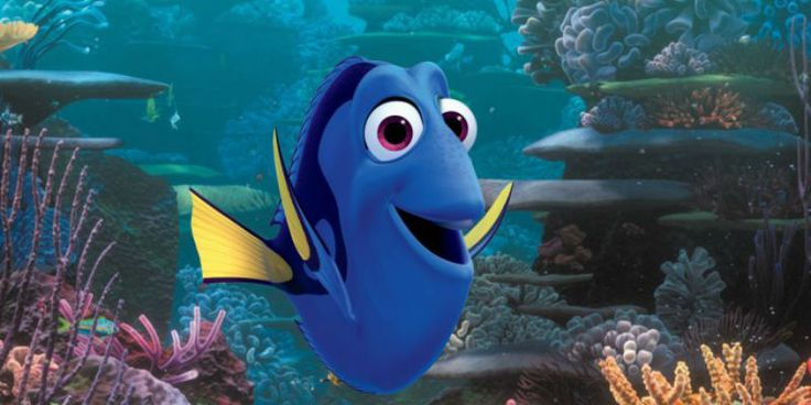 'Finding Dory' Plot Focus On Marlin And Dory's Relationship? Trailer Set To Release This 2015 - http://www.movienewsguide.com/finding-dory-plot-focus-marlin-dorys-relationship-trailer-set-release-2015/76243