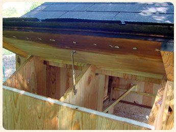 Découvrez les étapes de la construction du poulailler sur pilotis de Castorfou pour héberger 3 poules Marans grâce au plans, étapes détaillés...