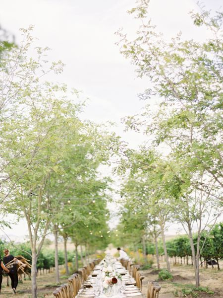 Unique Outdoor Wedding Decorations 2017: Get Inspired! Image: 4