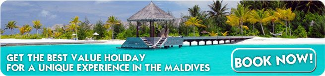 Guest houses in Maldives Special offers – Big Discounts and Free nights