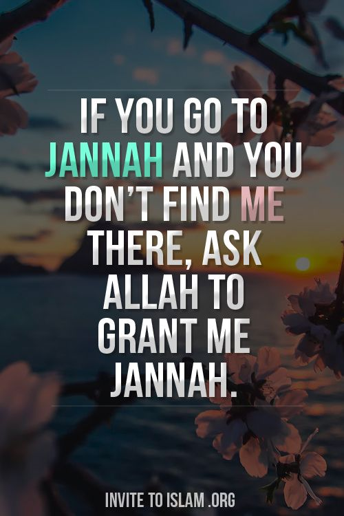 If you go to Jannah and you don't find me there, ask Allah to grant me Jannah.