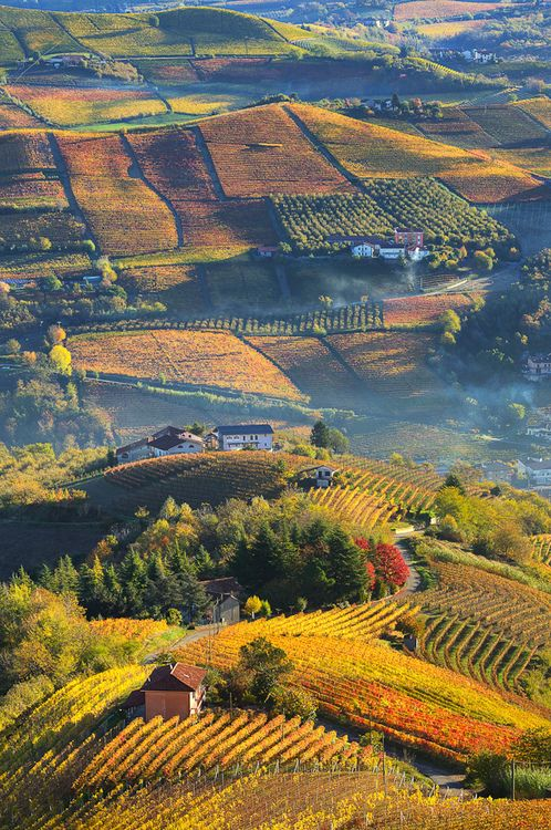 Rural houses on autumnal hills among vineyards of Langhe in Piedmont, Northern Italy