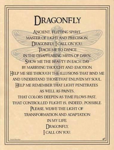 Details about Dragonfly Parchment Page for Book of Shadows, Altar – Trees, flowers & care