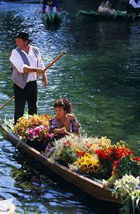 Marché flottant - L'Isle sur la Sorgue - Fleurs sur un négochin ~ petit bateau à fond plat utilisé principalement par les pêcheurs sur les rivières du sud est de la France. C'est une embarcation légère, rapide et maniable.