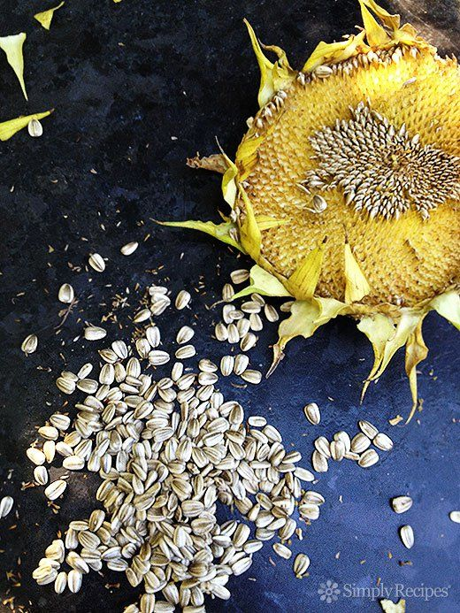 Roasted In-Shell Sunflower Seeds ~ Growing sunflowers? How to harvest and roast the sunflower seeds from your sunflowers. ~ SimplyRecipes.com