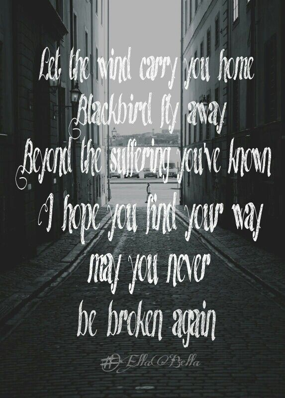 Alter Bridge -- I had never heard this until the other night when I accidentally clicked on this Blackbird instead of The Beatles song. But I liked it a lot!!